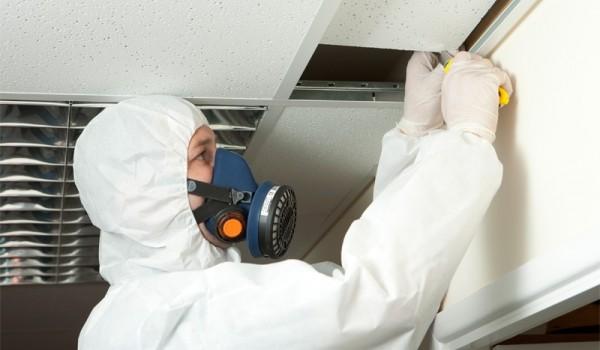 guide till asbestsanering